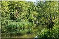 TQ1850 : River Mole by Ian Capper