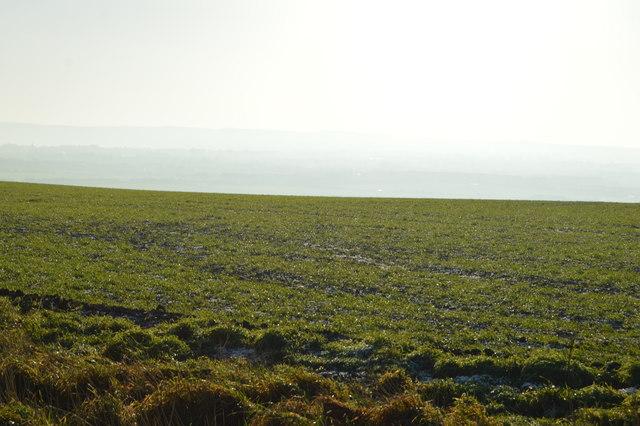 Arable land in winter sunshine