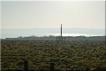 TA1281 : Filey Rocket Pole by N Chadwick