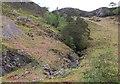 NG9338 : Tree-lined gully, Attadale by Jim Barton