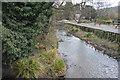 SU8692 : River Wye by N Chadwick