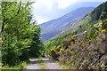 NH0148 : Fuar Tholl in sunshine by Jim Barton