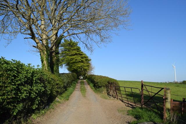 Country Lane Mount Lucas Offaly Ireland