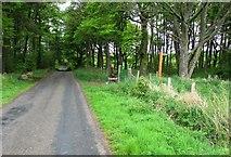 NO1706 : Path to Glenvale, Lomond Hills by Bill Kasman