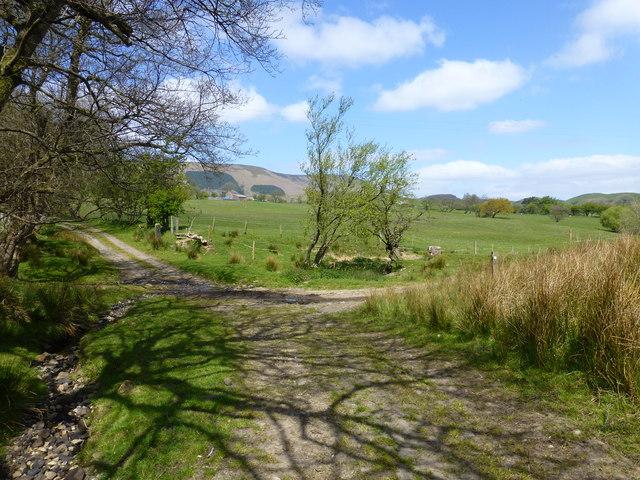 Waymarker near Knot Barn