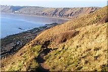 TA1281 : Footpath off The Brigg by N Chadwick