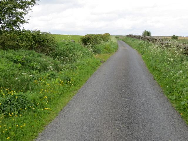 Longtons Lane