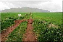 NO1808 : Path to Bunnet Stane, Lomond Hills by Bill Kasman