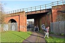TA1030 : Railway bridge over Wilberforce Way by N Chadwick