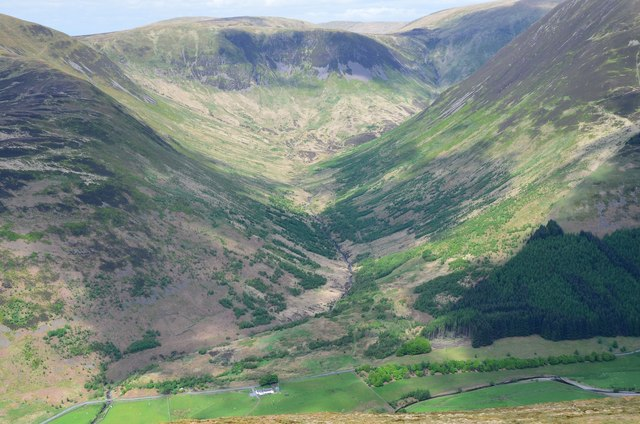A whole glen replanted at Carrifran