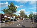 TQ4389 : Greenleafe Drive, Barkingside by Malc McDonald