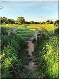 SU5985 : Gate on The Ridgeway National Trail by PAUL FARMER