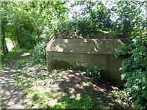 SU5985 : Pillbox on Thames Path near Cholsey by PAUL FARMER