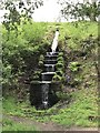 SK2569 : Waterfall in Chatsworth Park by Jonathan Hutchins