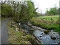 SH6943 : Afon Bowydd [1] by Christine Johnstone