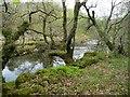 SH6943 : Afon Goedol, calmer between waterfalls by Christine Johnstone