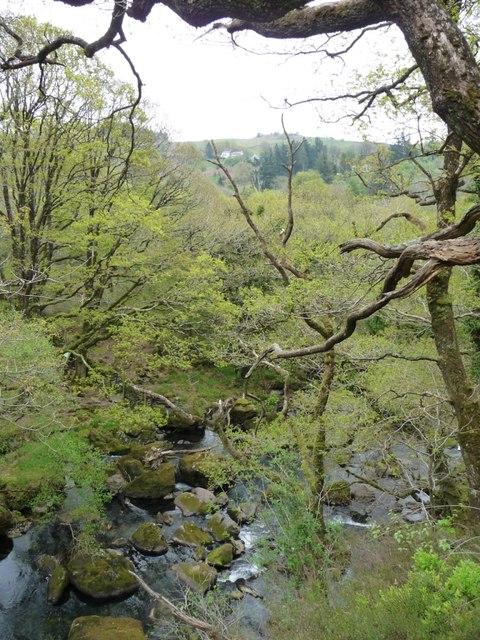 Afon Goedol in Coed Cymerau