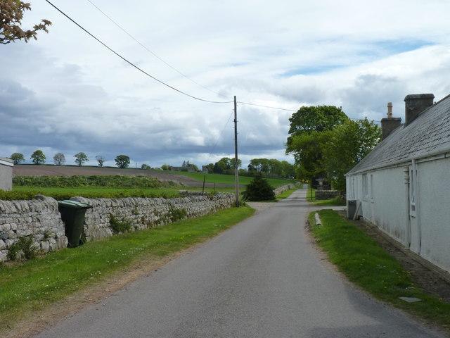 Minor road  near Cadboll