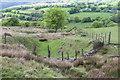 SO2300 : Drain off Cefn Crib by M J Roscoe