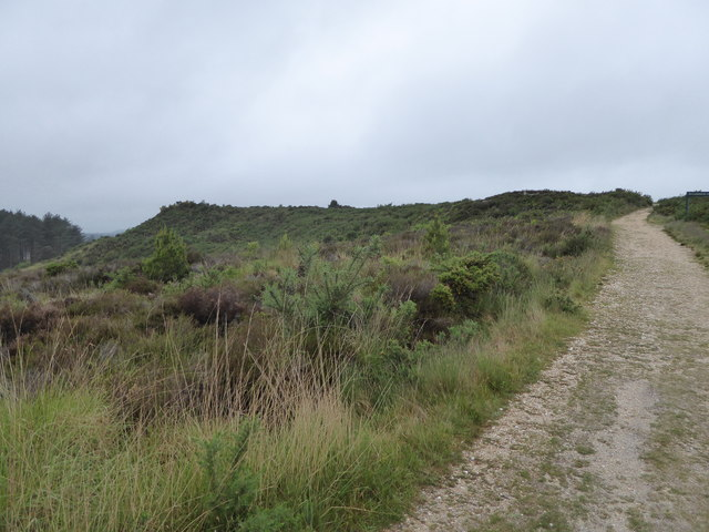 Wareham Forest Way and Woolsbarrow Hill Fort