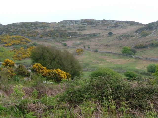 Open access rocky hillside, west of Ty'n y Mynydd