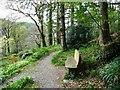 SH7557 : Woodland and wildlife garden at Ty Hyll by Christine Johnstone