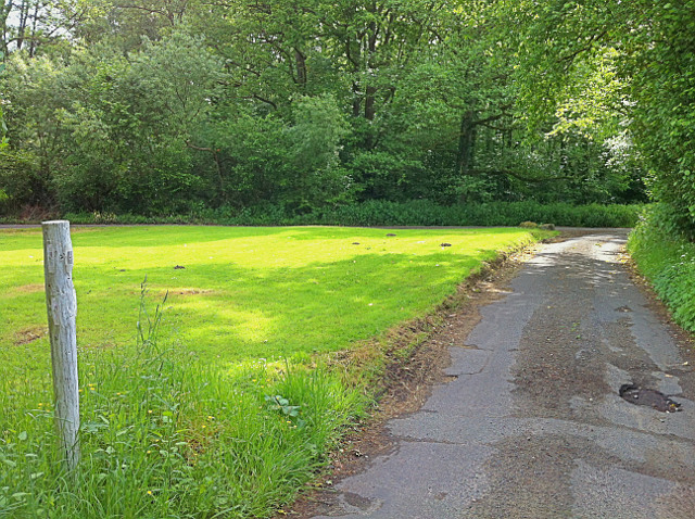 Green at Stoatley Hollow