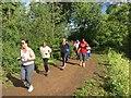 SU8980 : Runners at Maidenhead parkrun by Graham Hogg
