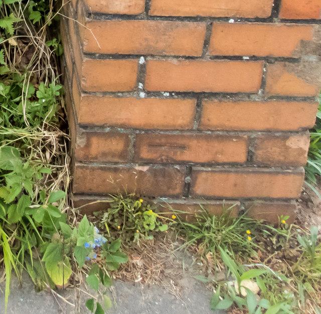 Bench mark on a gatepost