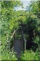 TL4807 : Footbridge to Hastingwood by Glyn Baker