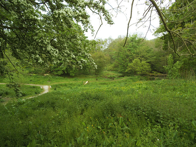 Site of Rowley's Mill