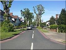 TQ1979 : The Ridgeway, Gunnersbury by David Howard