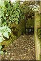SH3333 : North Wales WWII defences: RAF Penrhos - pillbox (2) by Mike Searle
