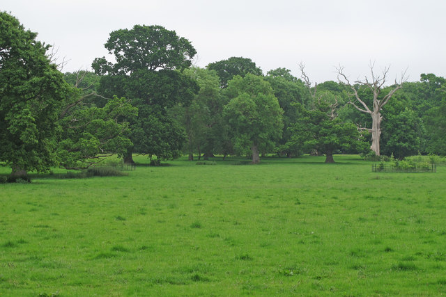 Trees and parkland on Sotterley Estate