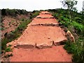 NO1806 : Path to Glenvale, Lomond Hills by Bill Kasman
