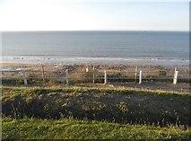 TG2142 : Cromer beach by David Howard