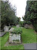 TQ1873 : St Peter, Petersham: churchyard (d) by Basher Eyre