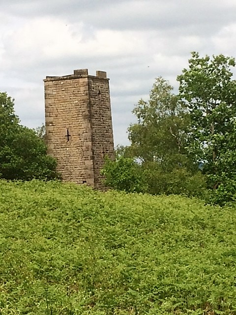 The Reform or Earl Grey Tower Stanton Moor