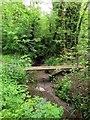 SP5405 : Footbridge over Boundary Brook by Steve Daniels