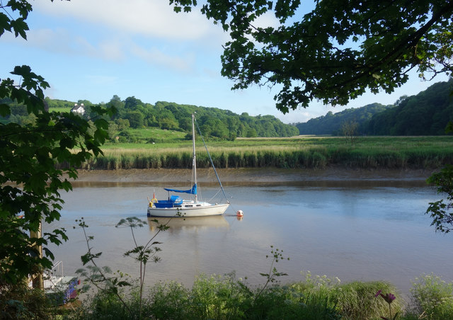 The Tamar Valley at Calstock