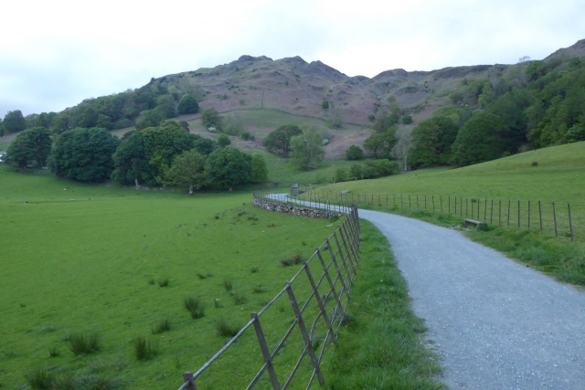 Path under Loughrigg Fell