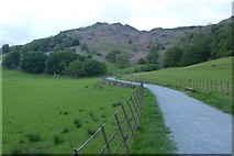 NY3404 : Path under Loughrigg Fell by DS Pugh
