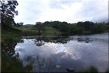 NY3404 : Eastern side of Loughrigg Tarn by DS Pugh