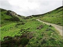 NO1805 : New path past Edge Head, Lomond Hills by Bill Kasman