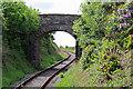 SW6530 : Helston Railway - cattle crossing over line by Chris Allen