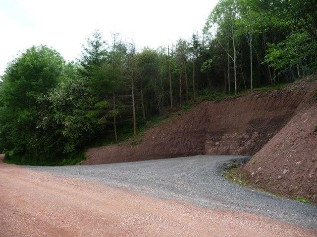 Reversing / parking bay, Llanthony Wood