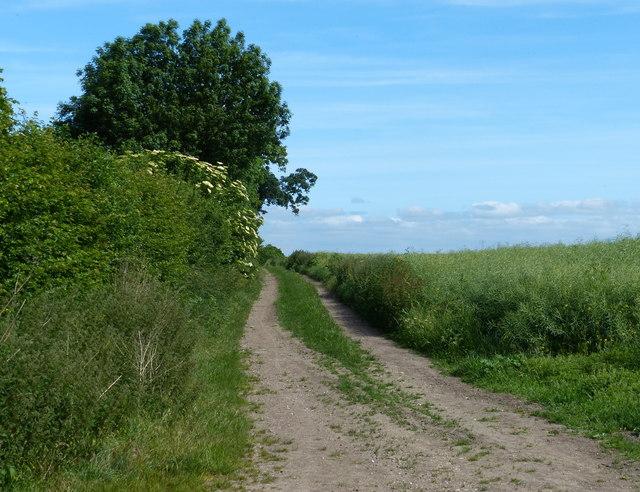 The Baulk permissive bridleway