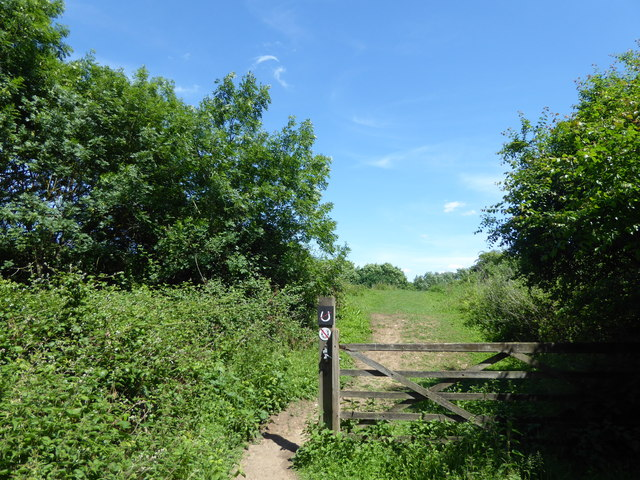The northern edge of Weald Country Park