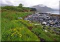 NG6326 : Foreshore east of Rubha na Sgianadin by Ian Taylor