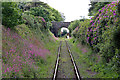 SW6430 : Helston Railway - approaching Trevarno Bridge and Station by Chris Allen